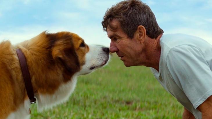 """""""Життя і мета собаки"""" - фільм для сімейного перегляду"""