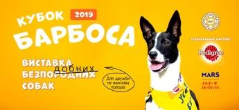Кубок Барбоса 2019. Виставка безпородних собак