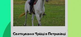 Екскурсія до Петриківки, на кінний завод та етно-хутір