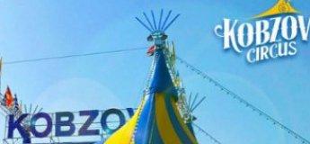 Неймовірно видовищне яскраве та зворушливе шоу. Ангели Цирку вкажуть Вам шлях до небосхилу циркового мистецтва.