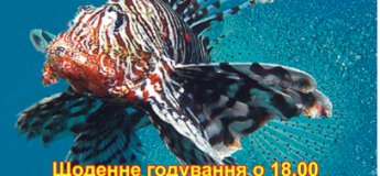 Київська виставка риб у місті Вінниця