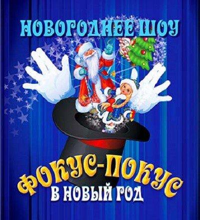 """Новогоднее шоу """"Фокус-покус в Новый Год"""""""