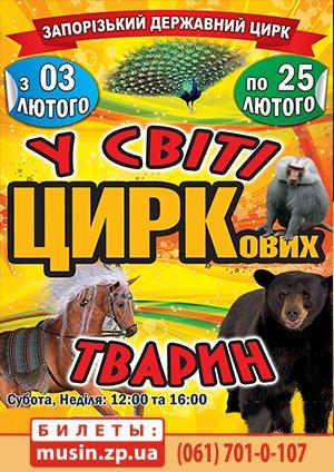 """Цирковое шоу """"В мире цирковых животных"""""""