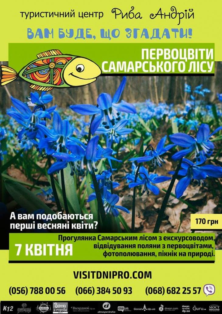 Фотополювання за первоцвітами у Самарському лісі