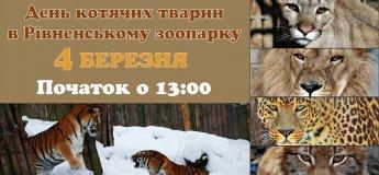 День котячих в зоопарку
