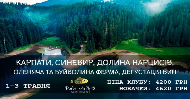 Синевир, Колочава, долина нарциссов и оленья ферма
