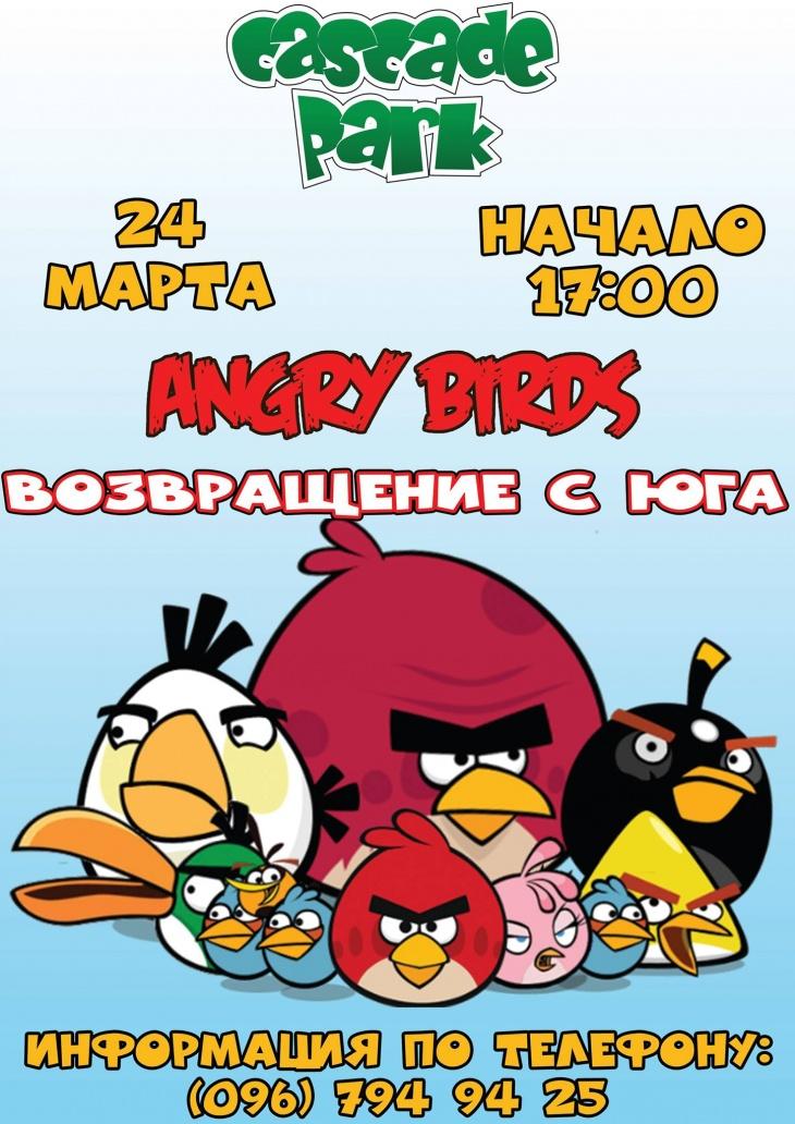 """Игровая программа """"Angry birds. Возвращение с юга"""""""