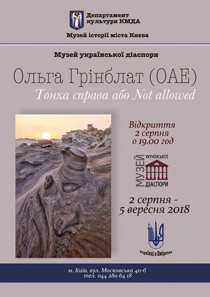 """Выставка Ольги Гринблат """"Тонкое дело или Not allowed"""""""