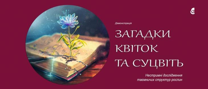 """Демонстрація """"Загадки квіток та суцвіть"""""""