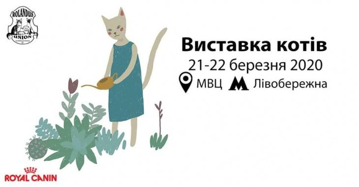 Виставка котів / CFA Cat Show