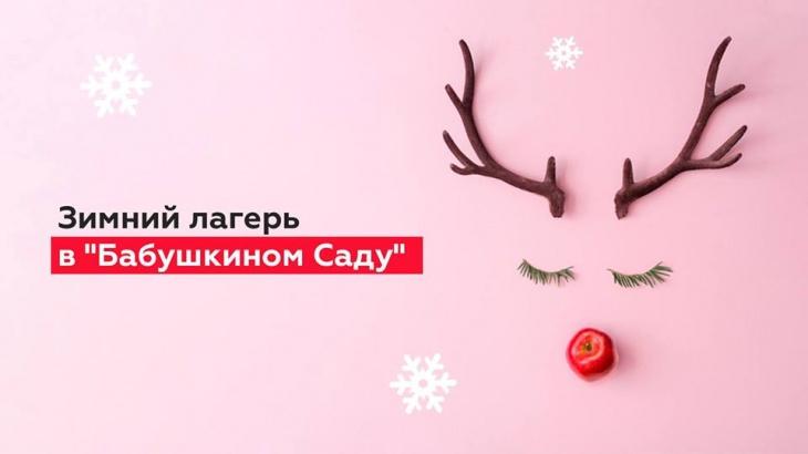 """Рождественские каникулы в """"Бабушкином Саду"""""""