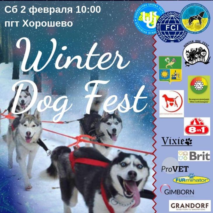 """Змагання із зимових видів їздового спорту """"Winter Dog Fest 2019"""""""