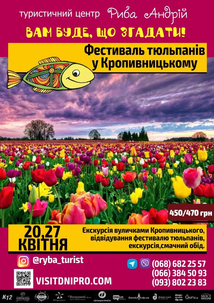 Кропивницкий: фестиваль тюльпанов