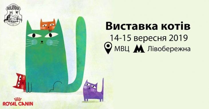 Виставка котів / RUI Cat Show