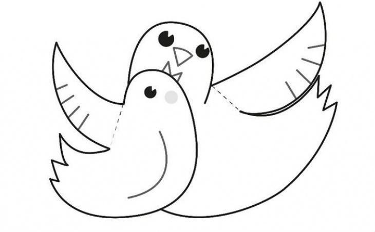 Пташиний квест