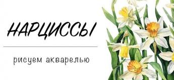 "Акварельный мастер-класс ""Нарциссы"""