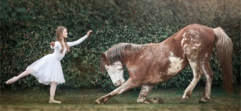 Liberty Horse Style