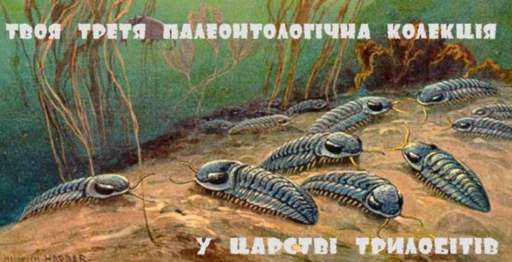 Твоя третя палеонтологічна колекція