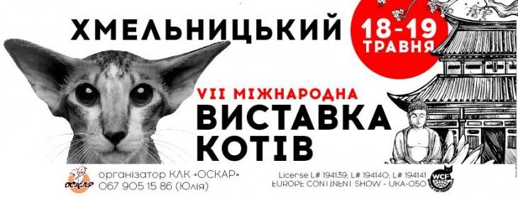 Міжнародна Виставка котів 18-19 травня