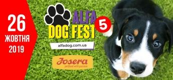 AlfaDogFest- 5: свято для собак та їхніх власників