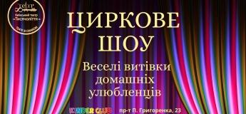 """Цирковая шоу-программа """"Веселые проделки домашних любимцев"""""""