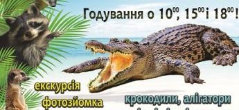 Крокодилова ферма