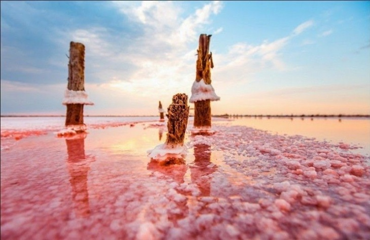 Поездка на Лемурийское (розовое) озеро
