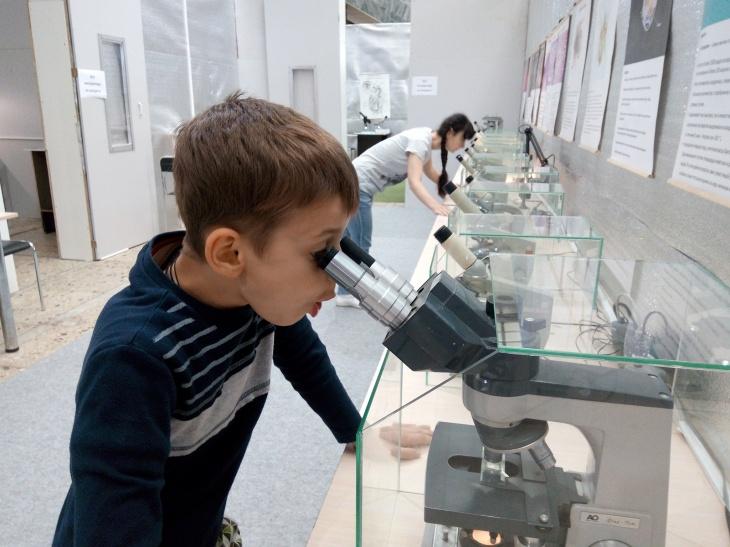 """Выставка """"Зоопарк под микроскопом"""""""
