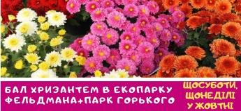 Бал Хризантем, экопарк Фельдмана, парк Горького