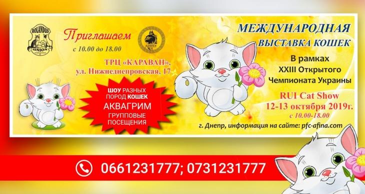 Выставка кошек в Караване