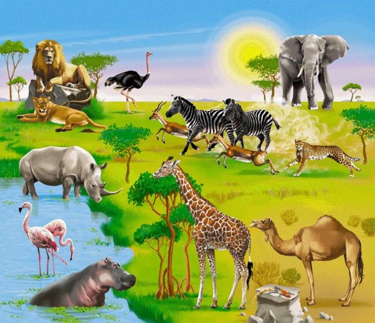 """Зоологічне лото """"Ох ця Африка"""""""