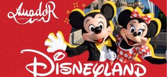 Семейная поездка в Disneyland от Amador