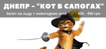 """Ледовое шоу """"Кот в сапогах"""""""