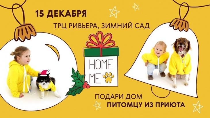 Home Me Fest #5 | Первая мокроносая ёлка!
