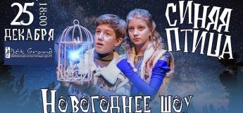 """Новогоднее шоу """"Синяя Птица"""""""