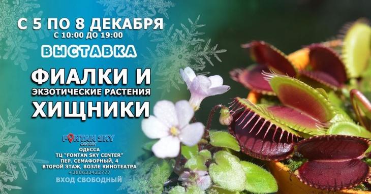 Выставка Фиалок, Хищных и экзотических растений в Одессе