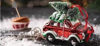 Поездка в сказку - настоящую резиденцию Деда Мороза