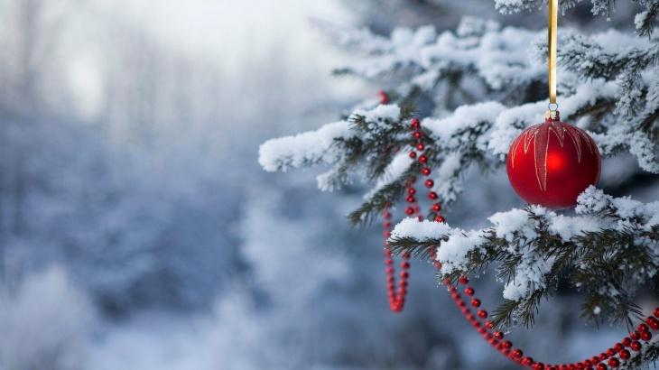 Новый год в горах Карпат 2020