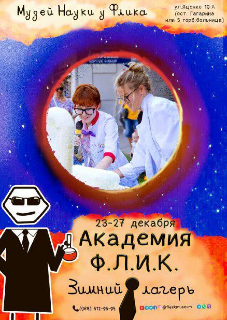 Зимний лагерь «Академия Флик»