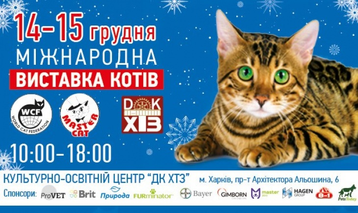 Виставку котів - Міжнародний чемпіонат «Master CAT»