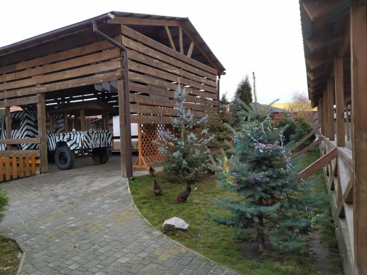 Масляна в Аквазоо Петропіль