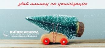 Пункти прийому новорічних ялинок у Києві