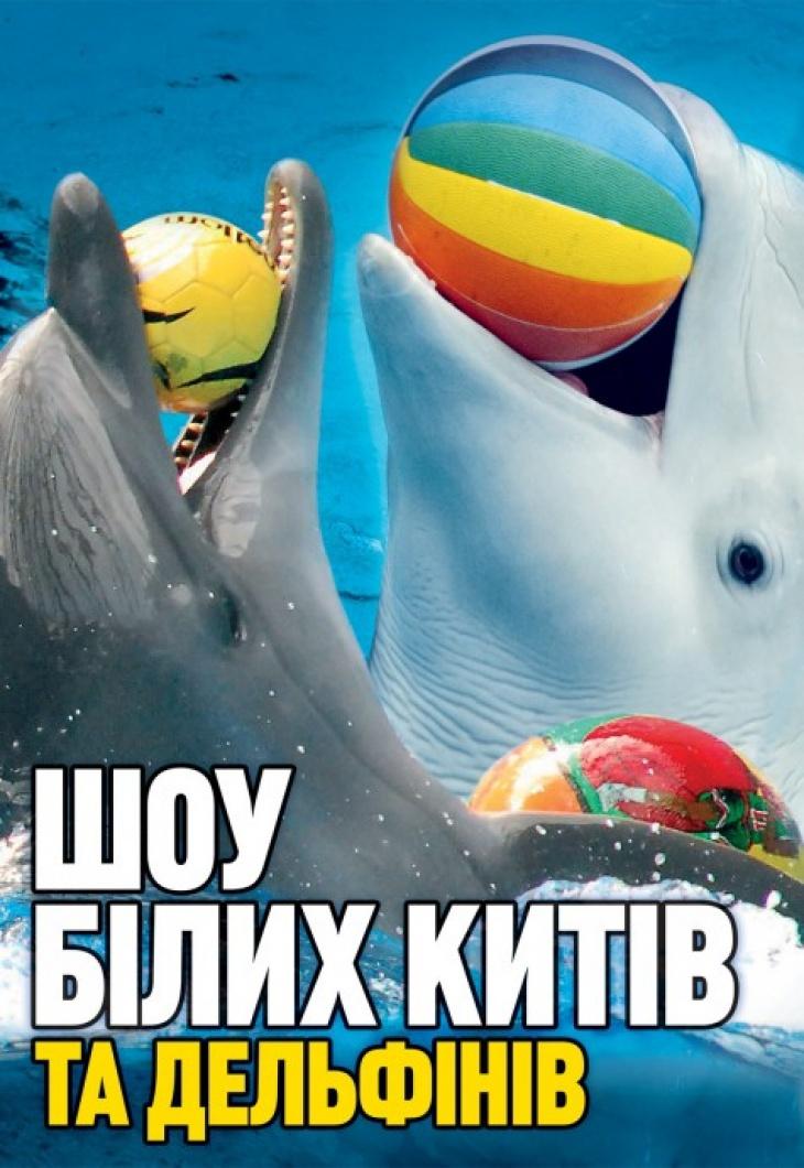 Шоу белых китов и дельфинов