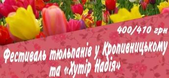 """Фестиваль тюльпанів у Кропивницькому та """"Хутір Надія"""""""