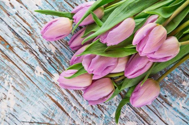 Свято Весни