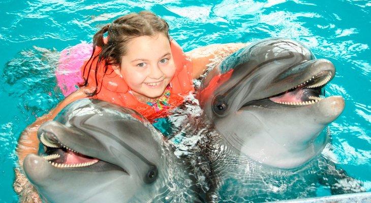 """Купание с дельфинами в """"Немо"""""""