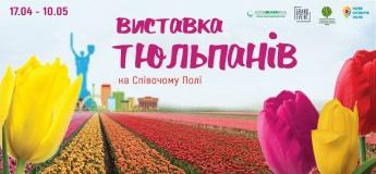 Ювілейна виставка тюльпанів на Співочому полі