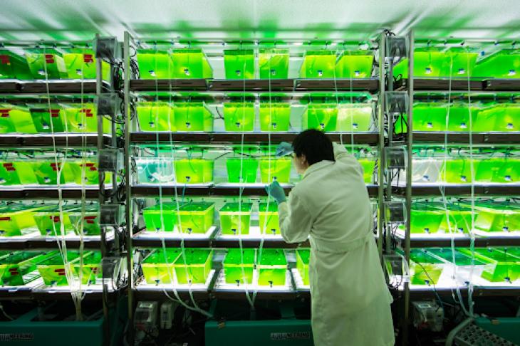 Біотехнології: майбутнє людства і природи