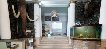 3D тур музеем природоведческим музеем