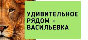 Удивительное рядом - Васильевка
